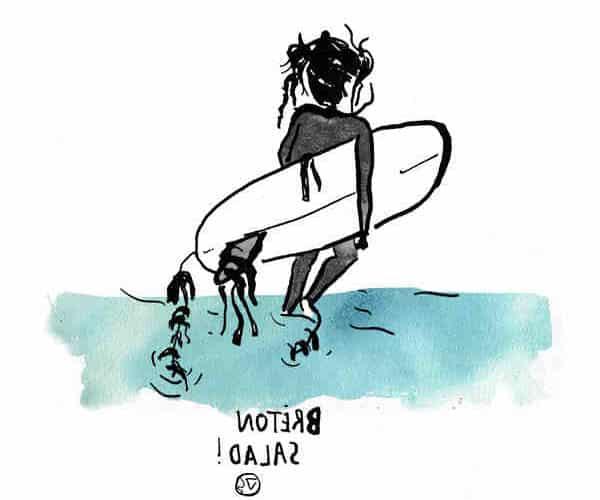Surf vannes